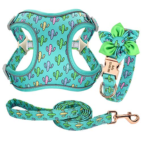 Forestpaw Multi-Colored Dog Harness and Leash Set,Step in Reflective Vest Harness, Personalized Dog Collar and Harness for Small,Medium,Large,French Bulldog,Labrador,Beagles,Samoyed,CactusGreen,S