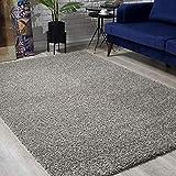 Impression Wohnzimmerteppich - Hochwertiger Öko-Tex zertifizierter Flächenteppich - Solid Color Teppich Hellgrau - Größe 80x150 - 6