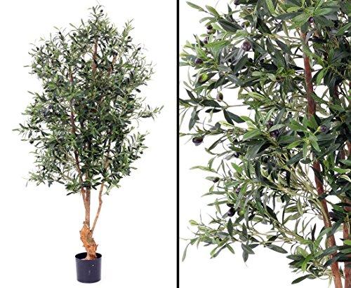 Olivenbaum, UV safe, 4160 Blätter, 120 Oliven, Höhe ca. 170cm mit Topf - Kunstbäume Kunstbaum künstliche Bäume Kunstpflanzen Kunstpalmen Dekopalmen