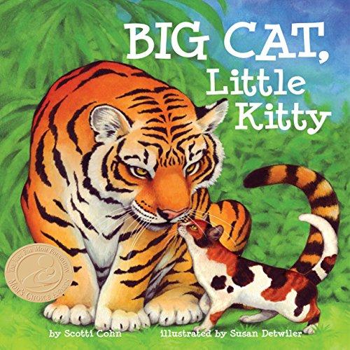 Big Cat, Little Kitty audiobook cover art
