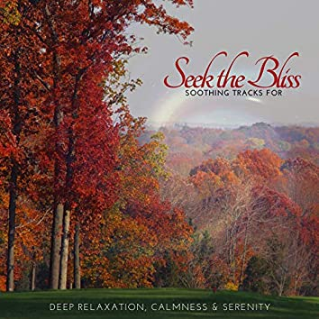 Seek The Bliss - Soothing Tracks For Deep Relaxation, Calmness & Serenity