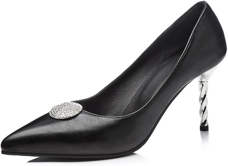 DecoStain Women's Pointed Toe Stilettos High Heels Pumps Party Evening Work Dress shoes