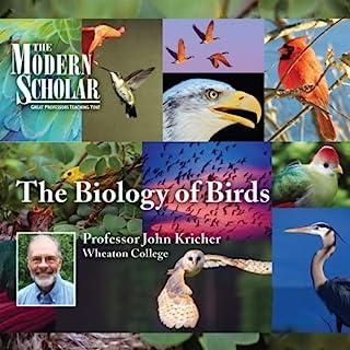The Modern Scholar: The Biology of Birds audiobook cover art