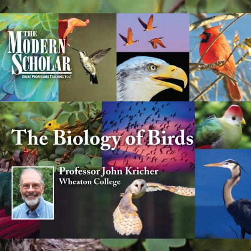 『The Modern Scholar: The Biology of Birds』のカバーアート