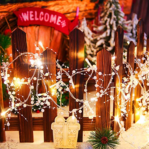 FHKBB 20 Feet Christmas LED String Lights Berry Beaded Garland Lights 60 LED Xmas Indoor String Lights Battery Operated Christmas Lights with Solid Beads for Christmas, Party Decor