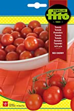 Amazon.es: huerto semillas tomate