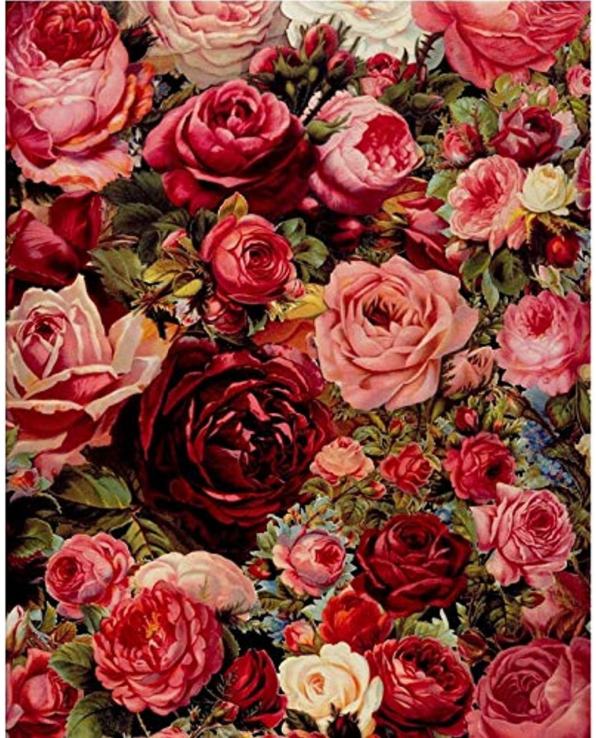 Tuwba Paint by Numbers Adult Kit Lush Red pink Flower Beginner Acrylic On Canvas,Framed 40X50Cm