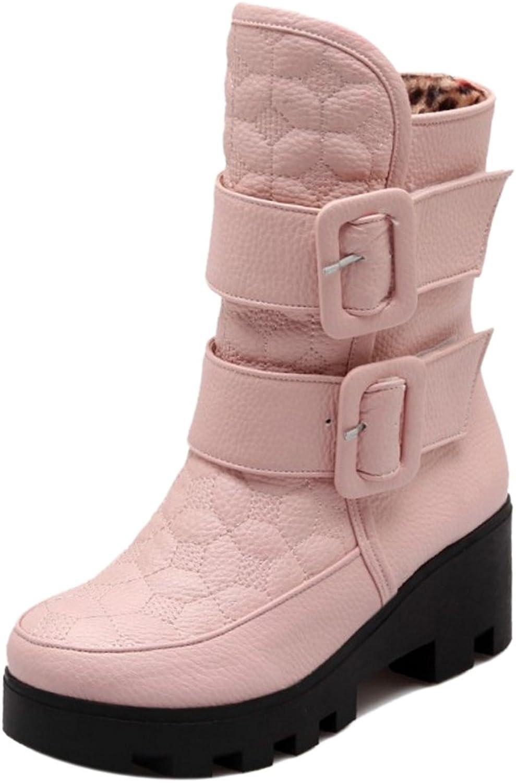 AicciAizzi Women Winter Warm Boots
