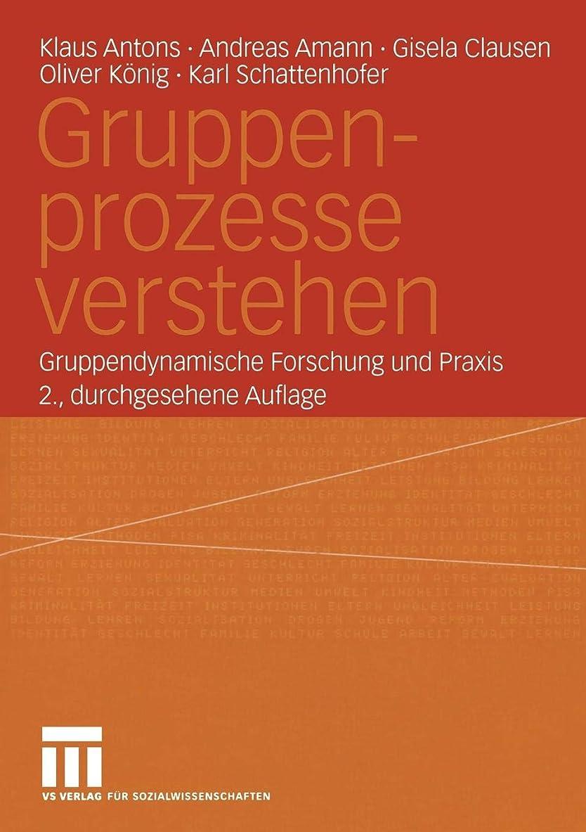 投資宿着実にGruppenprozesse verstehen: Gruppendynamische Forschung und Praxis