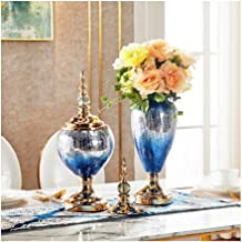 Flowers Vase Transparent Plant Vase Living Room Decoration with Dried Flower Set (1 Set 2 Pieces) Flower Bottle