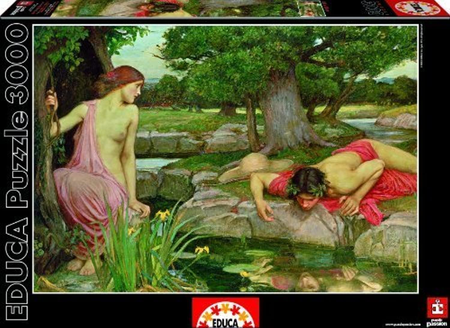 saludable Echo and Narcissus - John William Waterhouse Waterhouse Waterhouse - Educa - 3000 pc by Educa  promociones