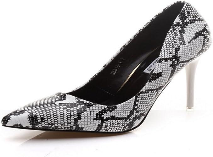 HBDLH Chaussures pour Femmes Les Talons DE 10 Cm De Haut Chaussures Pointues Chaussures Sexy Les Chaussures D'été.