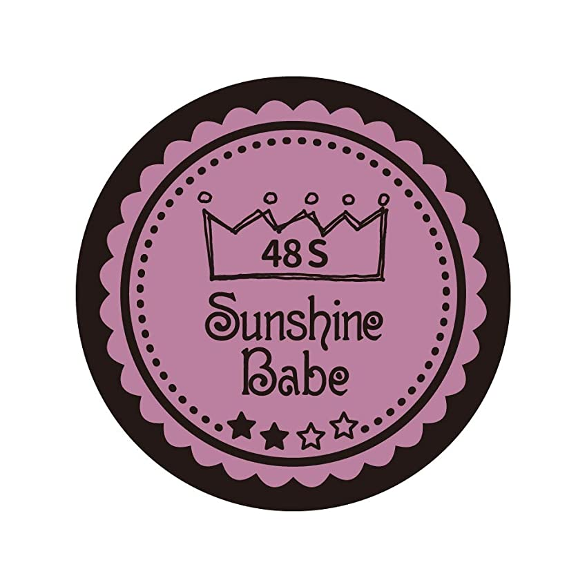 食事勤勉手がかりSunshine Babe カラージェル 48S ペールモーブ 4g UV/LED対応