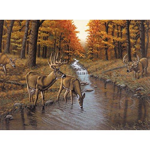 Royal & Langnickel PBN Adult Lg Symond's Creek