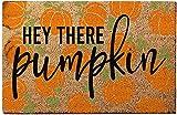 Felpudo, decoración de otoño y otoño, felpudo de gnomo,...