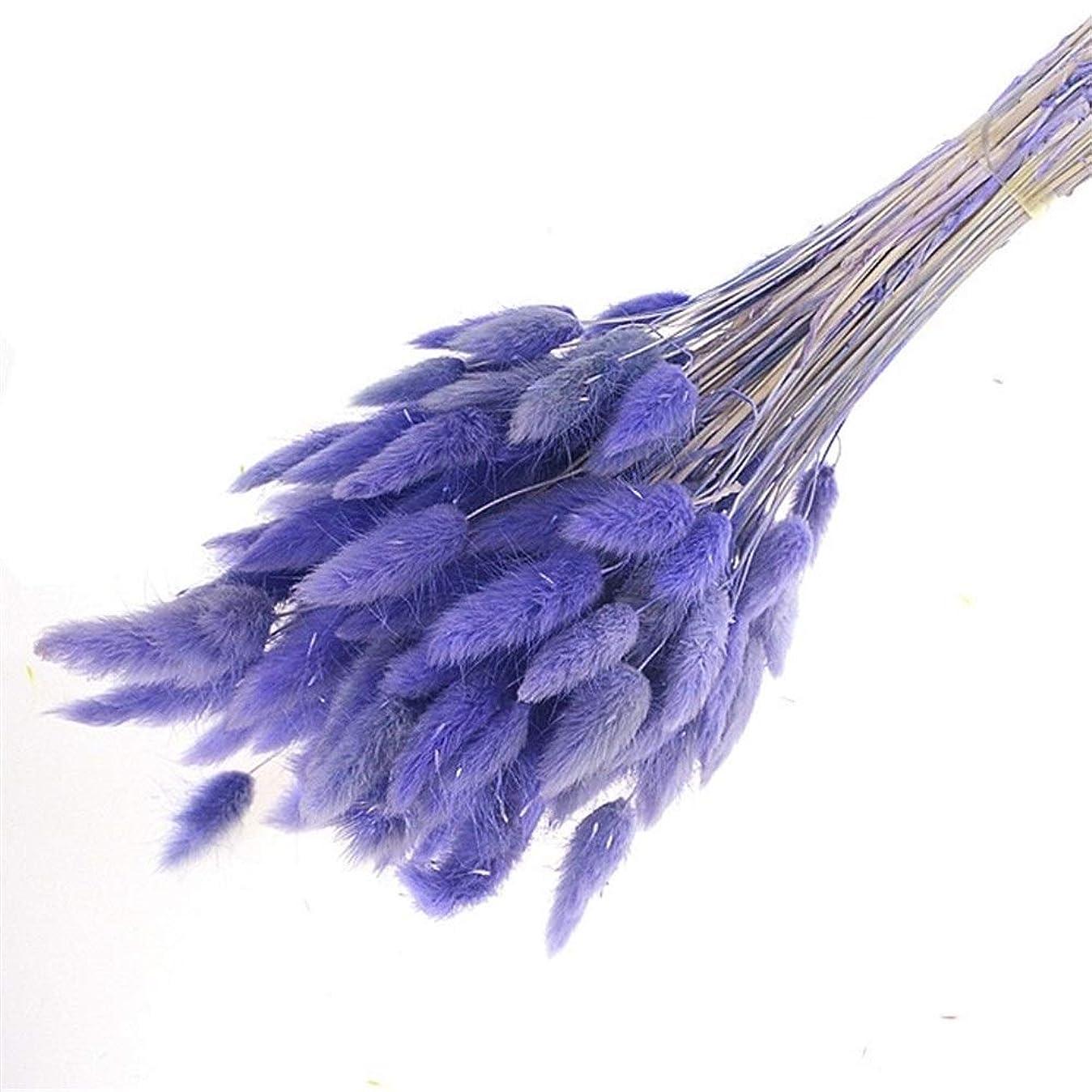 昨日女将大佐FELICIAAA 60pcs /ロットガーデンラビットテール草の花ブーケ結婚式ホームデコレーション乾燥生花ナチュラルプリザーブド (色 : 紫の)