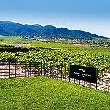Smartbox - Caja Regalo - Visita a Bodega Madrid Romero con cata de 5 vinos - Ideas Regalos Originales