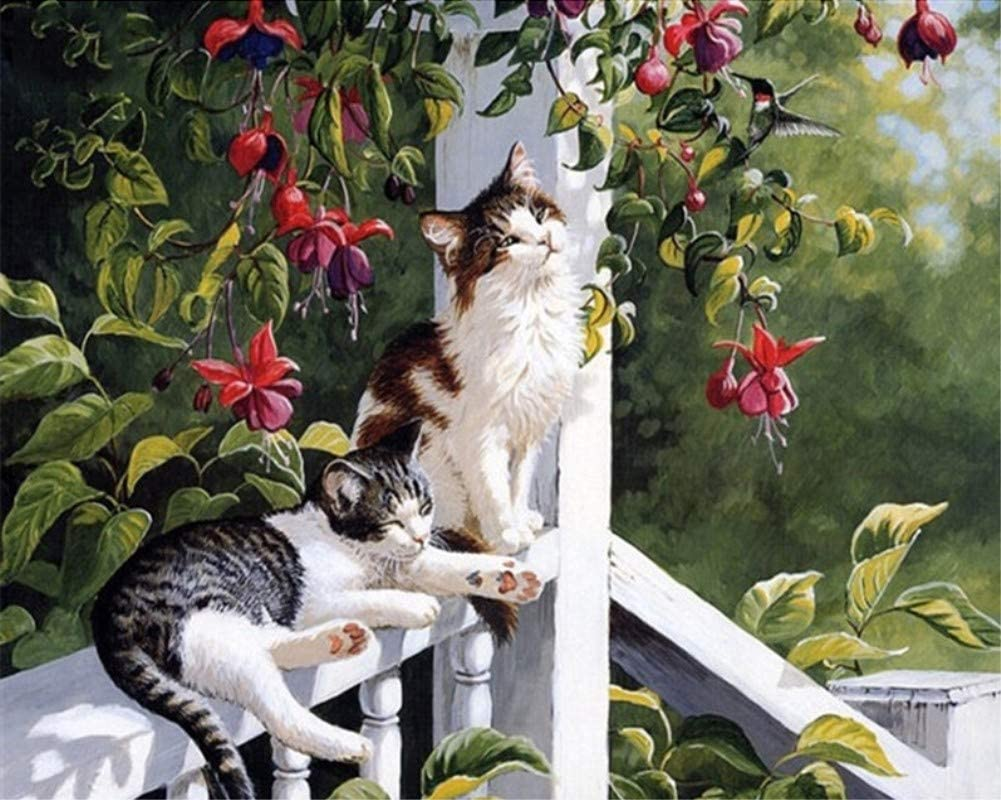 ABEUTY DIY Paint by Numbers for Adults Beginner - Two Cats in The Garden 16x20 inches Number Painting Anti Stress Toys (No Frame)