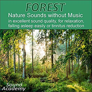 Forest - Nature Sounds without Music in excellent sound quality, for relaxation, falling asleep easily or tinnitus reduction