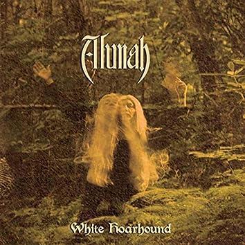 White Hoarhound