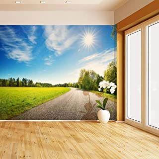 HIMURAL Road Panorama on Sunny Spring Day countrysides and Pictures Self Adhesive Peel and Stick Wallpaper Self Stick Mural Photos Home Wall Paper Sticker Wall Mural Decals Fresco Posters Removable
