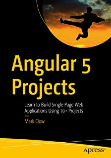 Best learn angular 5 Reviews