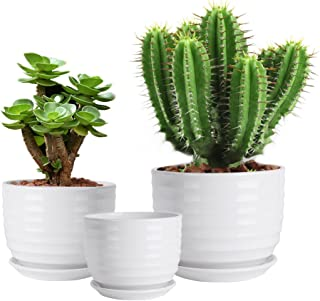 Vencer (3 Pack Modern Minimalist Ceramic Succulent Planter Pot - for All House Plants Flowers,Herbs,African Violets,Succulents,White,VF-085