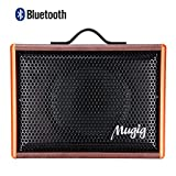 Save 55% On Mugig Guitar Amplifier, 25W, Rechargeable Guitar Amp