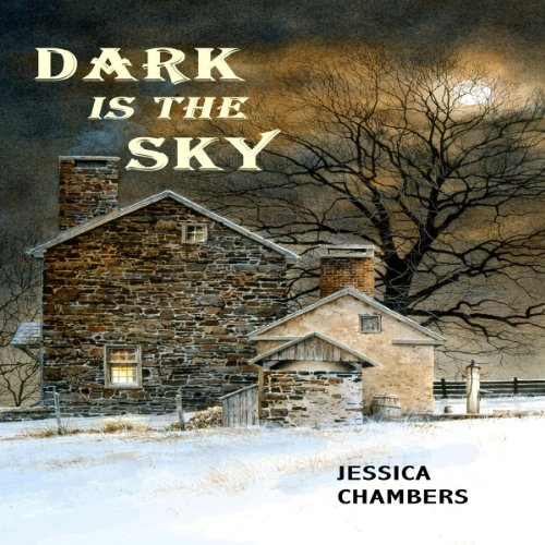 Dark Is the Sky audiobook cover art