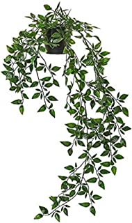 Digital Shoppy IKEA Artificial Potted Plant Hanging Indoor and Outdoor