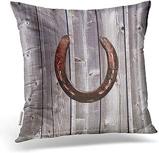 Best western horse pillows Reviews