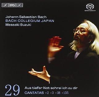 Bach: Cantatas, Vol. 29