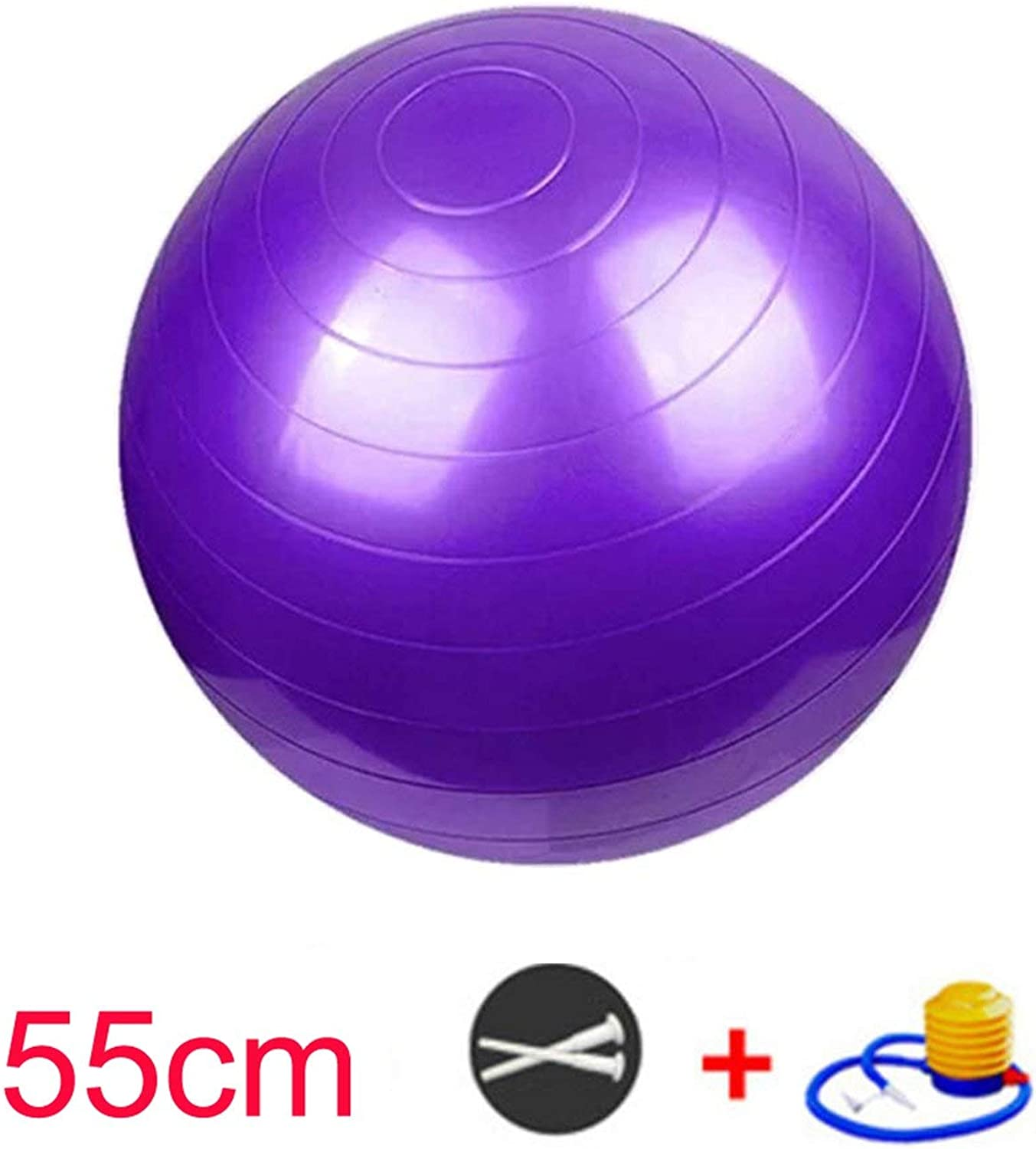 Exercise Ball (55 65 75cm) Extra Thick Yoga Ball Chair AntiBurst Heavy Duty Stability Ball Birthing Ball with Quick Pump