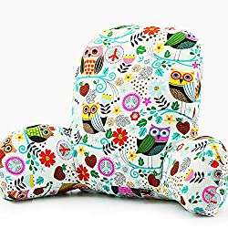 cool design reading pillow owl song while background colorful look