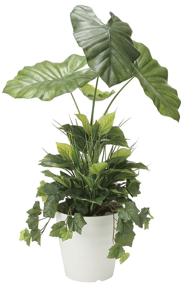 結紮多様なしかし造花 観葉植物 「タロリーフ?植栽付 H90cm」 光触媒(空気清浄) インテリアグリーン 鉢植え