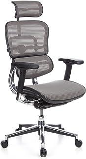 hjh OFFICE 652100 silla de oficina ERGOHUMAN tejido de malla gris, amplios ajustes, sólido aluminio pulido, ergonómico