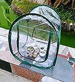 MDCG Plegable Cubierta Vegetal Película Transparente Jardín Cubierta Protectora Pequeño Invernadero Impermeable Protección contra El Frío Lonas de Exterior Claro (Color : 2 pcs, Size : 24x24x28in)