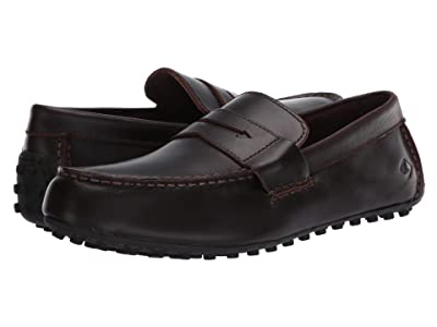 Sperry Hamilton II Penny (Amaretto) Men