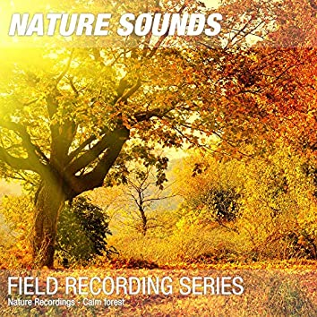 Nature Recordings - Calm forest
