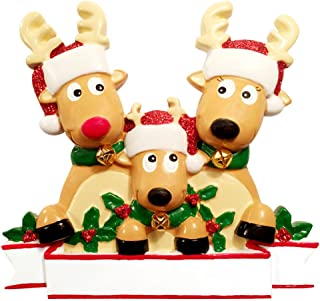 Personalized Reindeer Family of 3 Christmas Tree Ornament 2019 - Cute Deer in Glitter Santa Hat Real Bell Tradition Gift Grand-Kid Rudolph Red Nose Holiday Winter Year - Free Customization (Three)