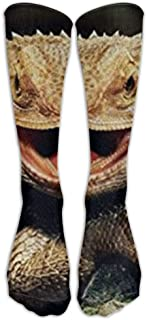 SARA NELL Bearded Dragon Lizards Stockings Long Tube Socks, Classics Knee High Socks Sports Socks for Women Teens Girls