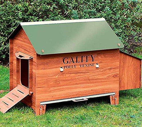 FINCA CASAREJO Gallinero Exterior Grande Fabricado en láminas de HPL para 4-6 gallinas ¡Cinco años de garantía! - Modelo Gality Polly Venise