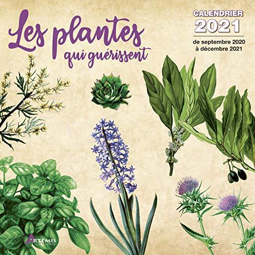CALENDRIER 2021 DESSIN PLANTES QUI GUERRISSENT - PHYTOTHERAPIE - MELISSE (los) +offert un agenda de poche 2021