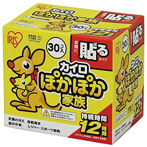 Hokkairo Hand Lichaam Warmers Stick op Kleding Lijm 30PK