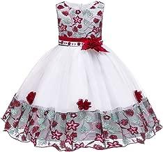 Myosotis510 Girls' Lace Princess Wedding Baptism Dress Long Sleeve Formal Party Wear for Toddler Baby Girl