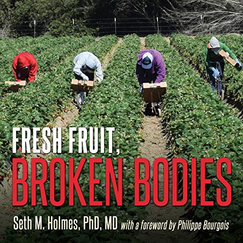 Fresh Fruit, Broken Bodies cover art