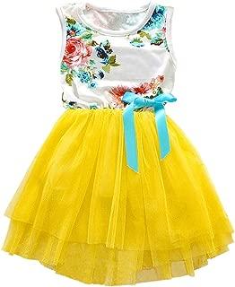 Csbks Toddler Kids Cute Floral Sundress Tulle Tutu Skirt Baby Girls Dress (Size 12M-5T)