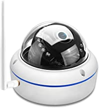 Draadloze 1080p IP Camera Vandal-Proof Security Dome Camera Wifi Night Vision Motion Detect Detect ONVIF YOOSEE ONVIF RTSP...