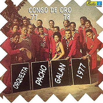 Congo de Oro 77