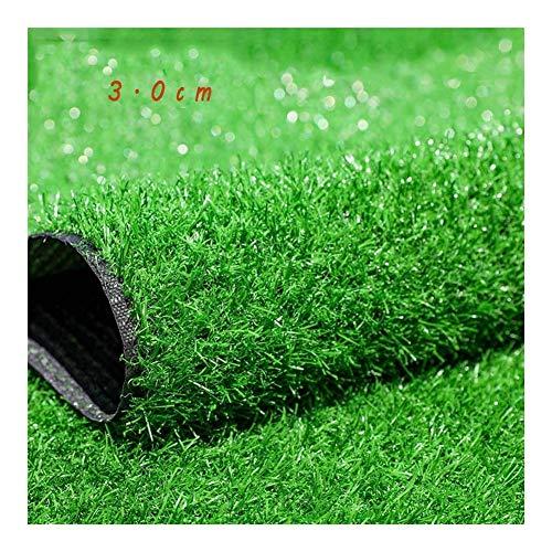 GFSD Grünes Kunstrasen Bodenmatte Turf Dog Mat Pad Lichtbeständigkeit, UV-Beständigkeit Synthetischer Landschaftsrasen Gartenteppich (Color : Green 3.0cm, Size : 2x5m)